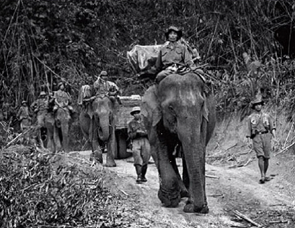 A Viet Minh Porter Column using Elephants