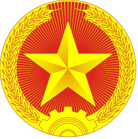 People's Army Vietnam Insignia